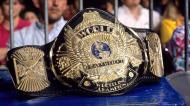 Making a Champion: Terry Funk
